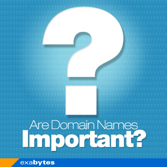 are domain name important